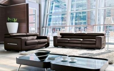 due divani marroni e due tavolini
