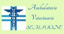 Ambulatorio veterinario Sempione
