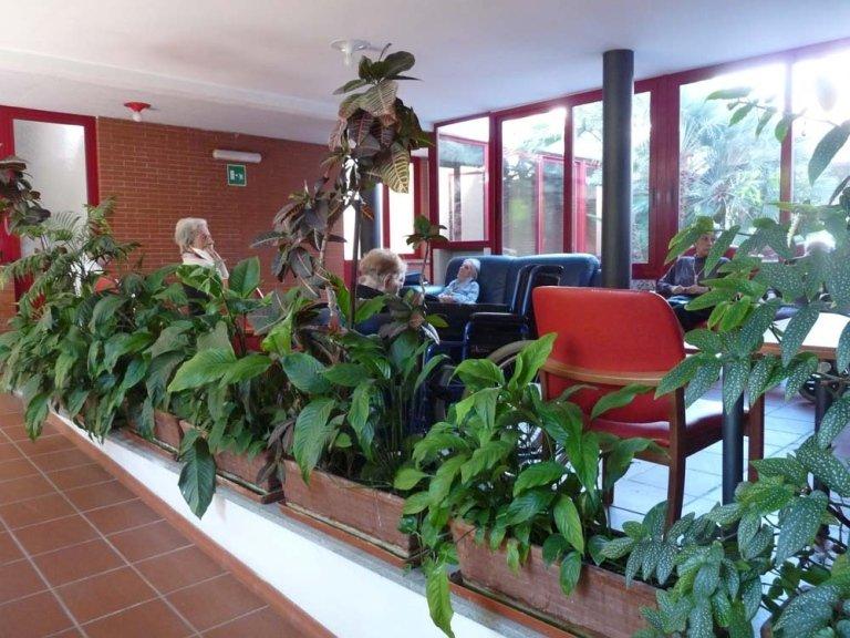le piante