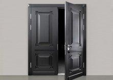 shield security door