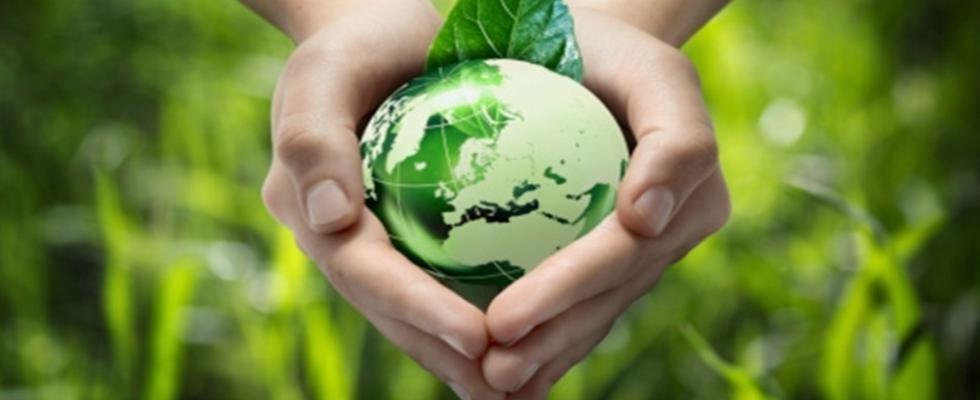 raccolta e smaltimento di rifiuti pericolosi
