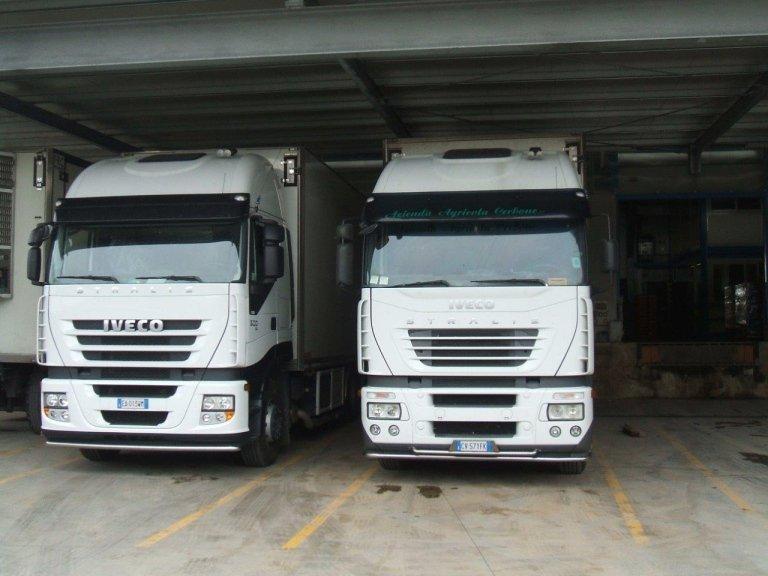 Consegne ortofrutta con camion refrigerati