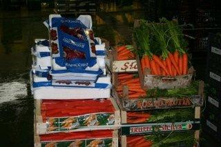 Radicchio e carote