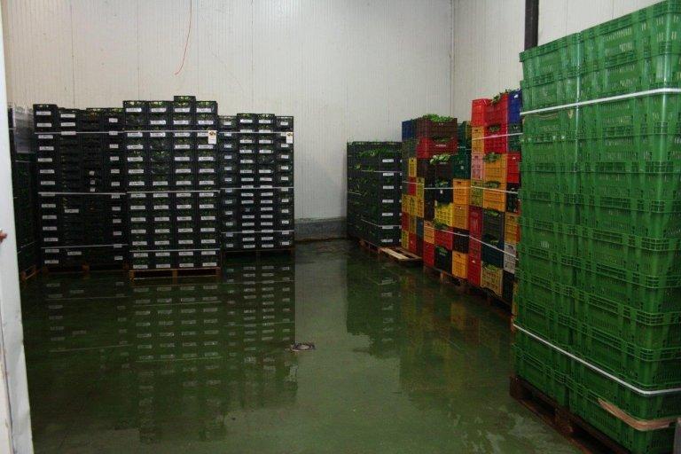 Azienda Agricola Cerbone, magazzino refrigerato