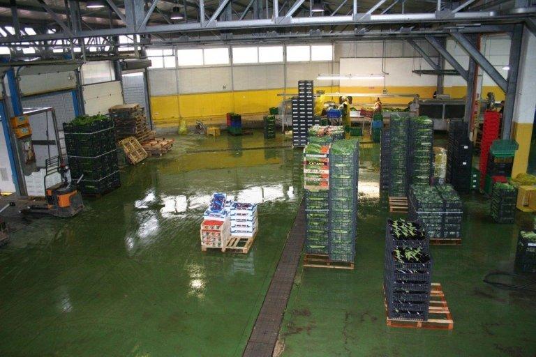 Azienda Agricola Cerbone distribuzione ortafrutta