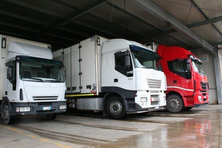 Azienda Agricola Cerbone distribuzione di ortaggi con autocarri propr