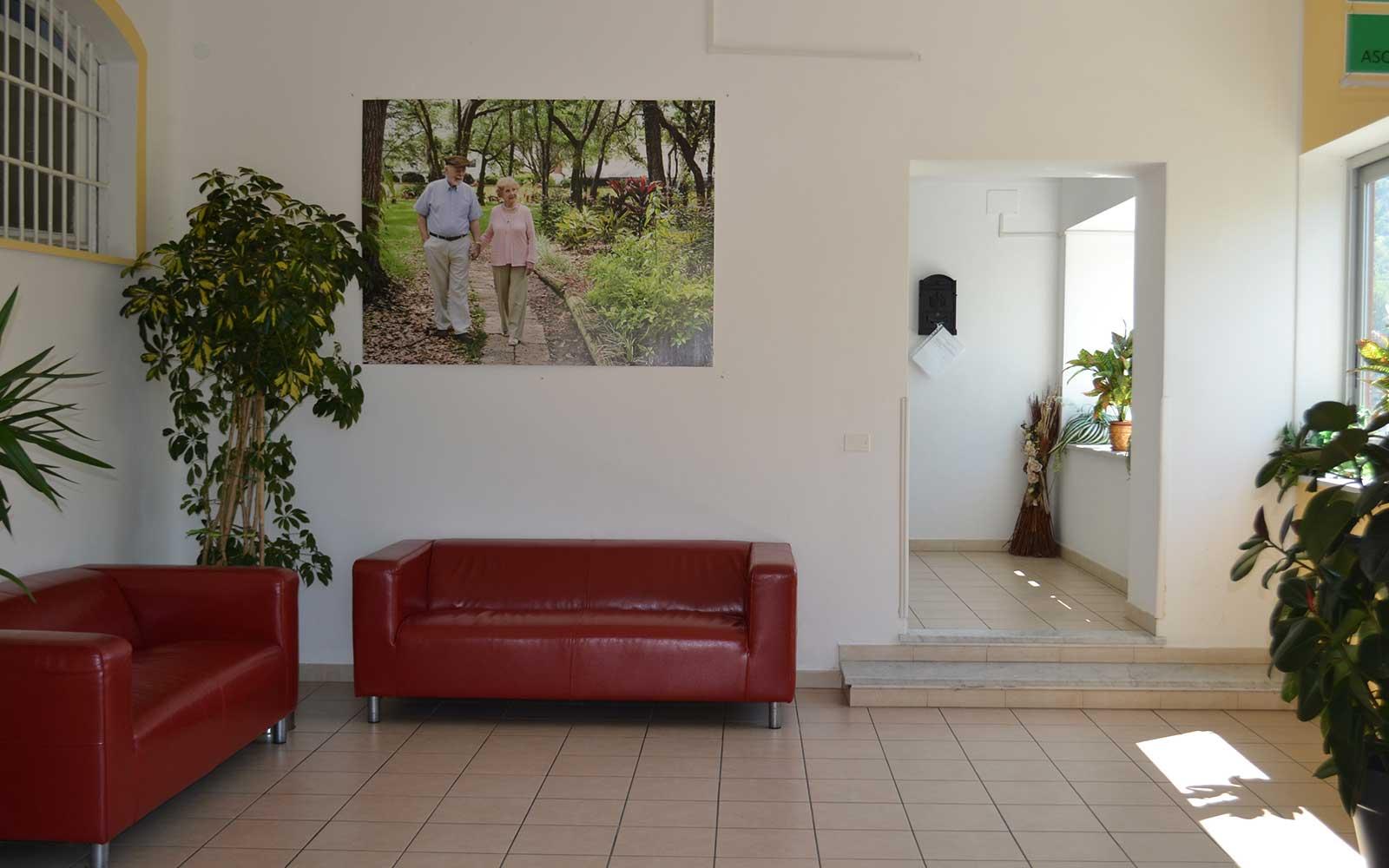 due divani in pelle rossi e dei vasi con delle piante