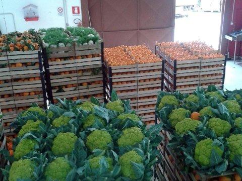 Stoccaggio frutta e verdura