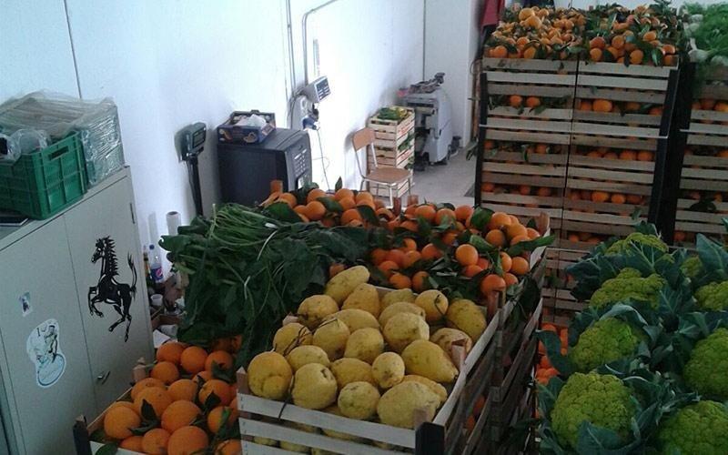 Commercio frutta fresca