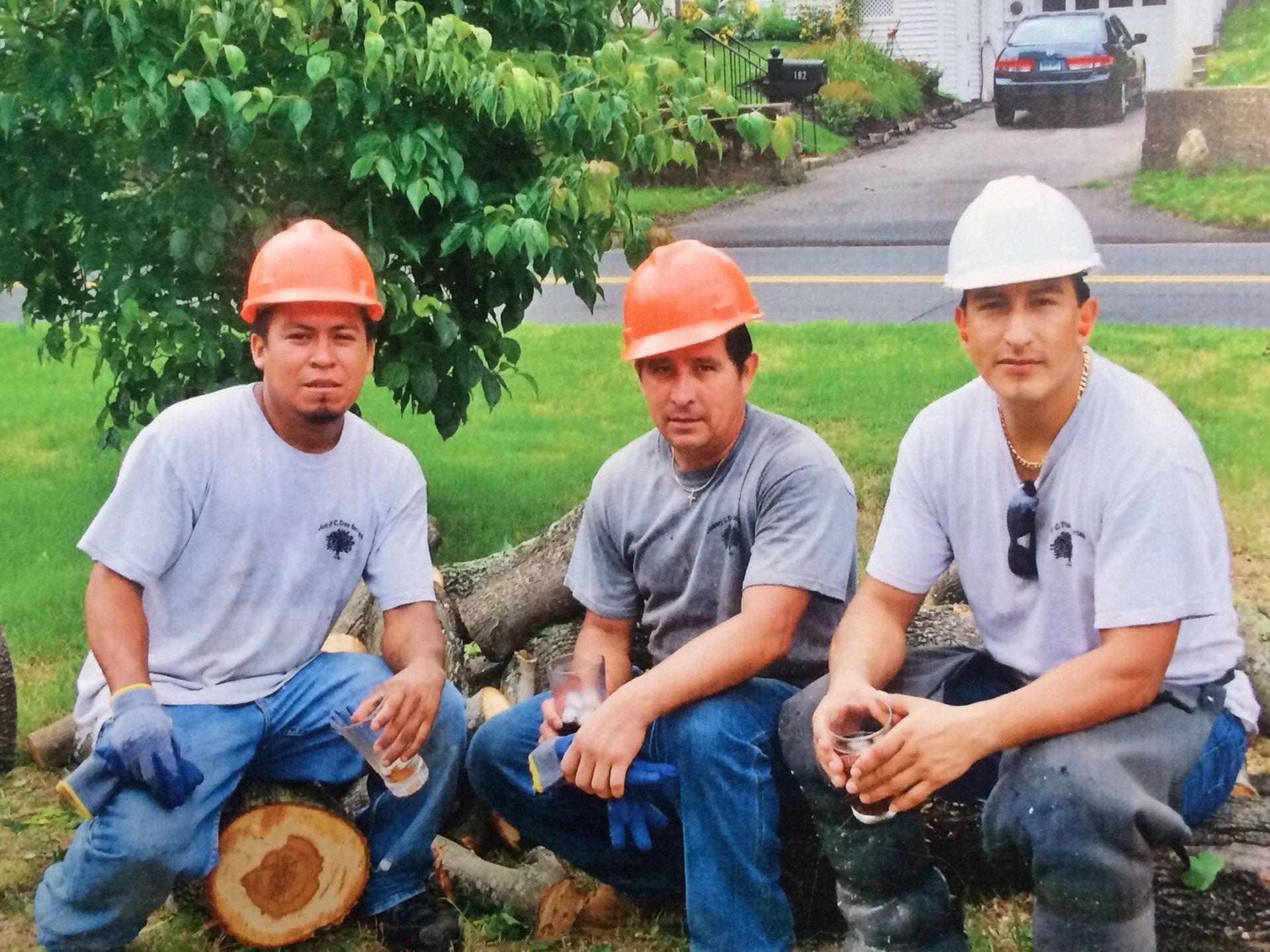 Johnny C. Tree Services