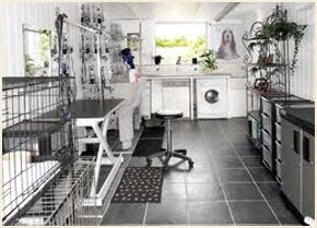 My clean and well equipped dog parlour