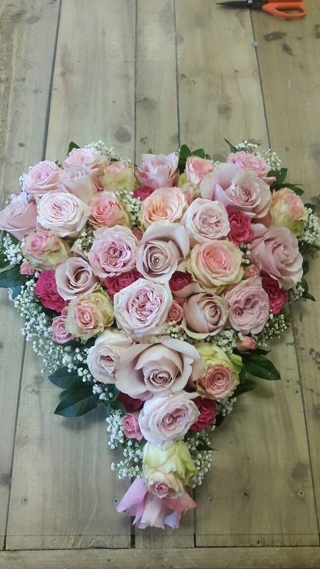 different shades of pink roses