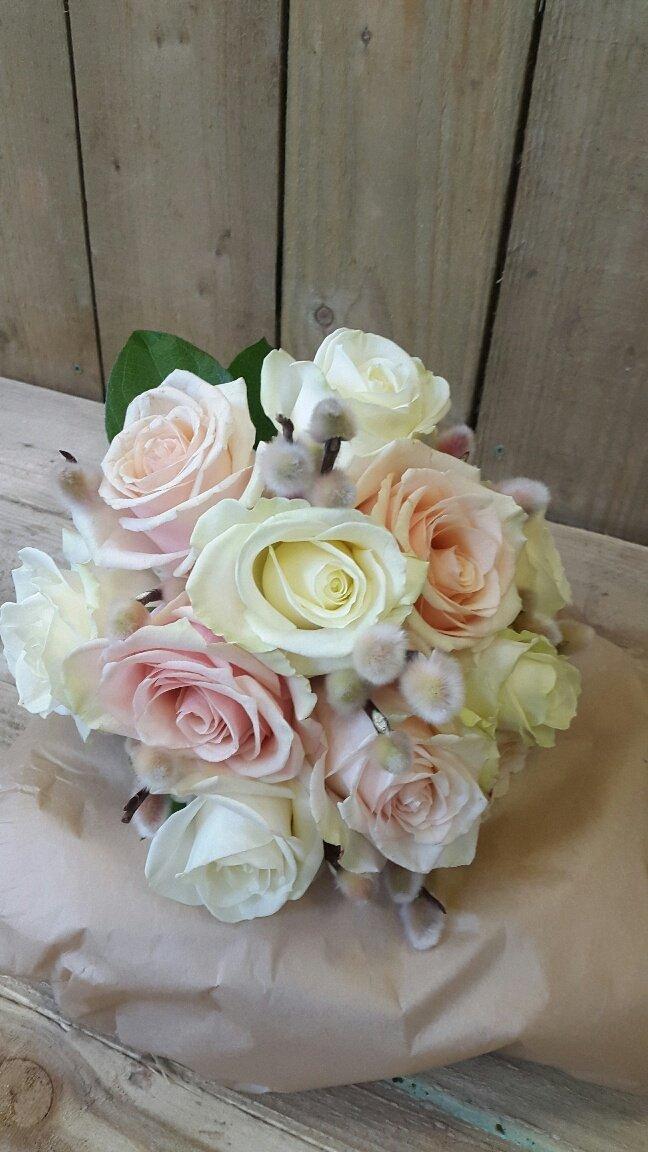 light coloured roses