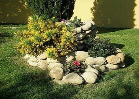 rocce giardino fiori