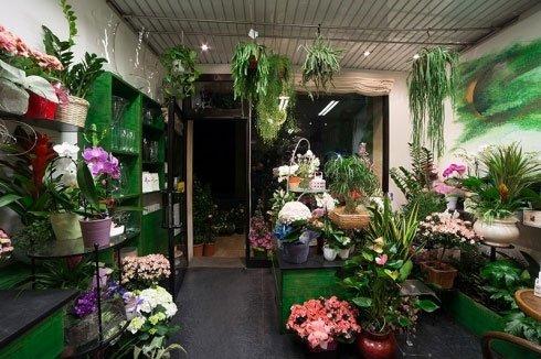 Degli scaffali con dei vasi e dei vasi con delle piante fiorite
