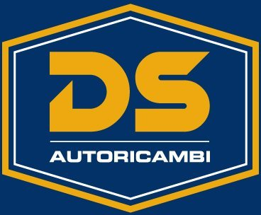 DS autoricambi - logo