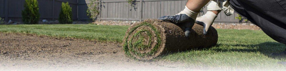 westland turf preparation to lay turf