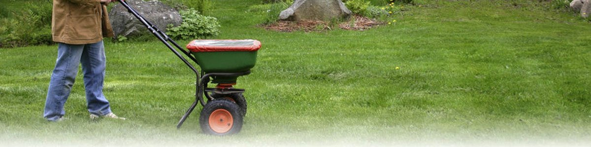 westland turf lawn care products