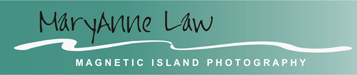 Maryanne Law logo