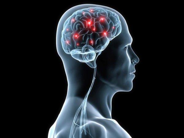 ricerche neurologiche