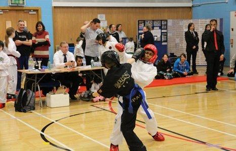 professional karate training
