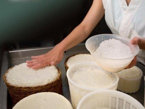 Attrezzature per caseifici e industrie alimentari