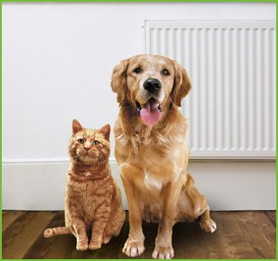 Pets At Home Walsall Opening Times