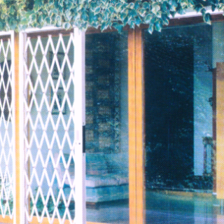 Inferriate di sicurezza per porte