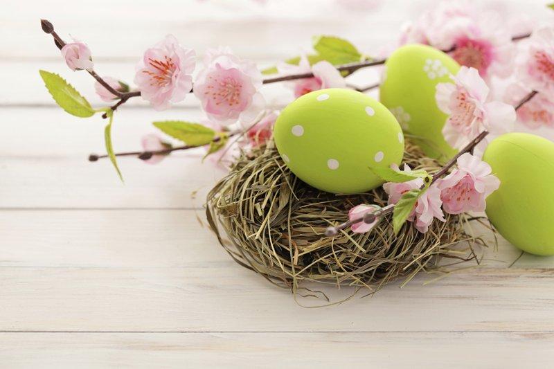 fiori di ciliegio e uova decorate