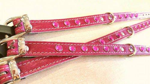dei collari di color rosa e dorato