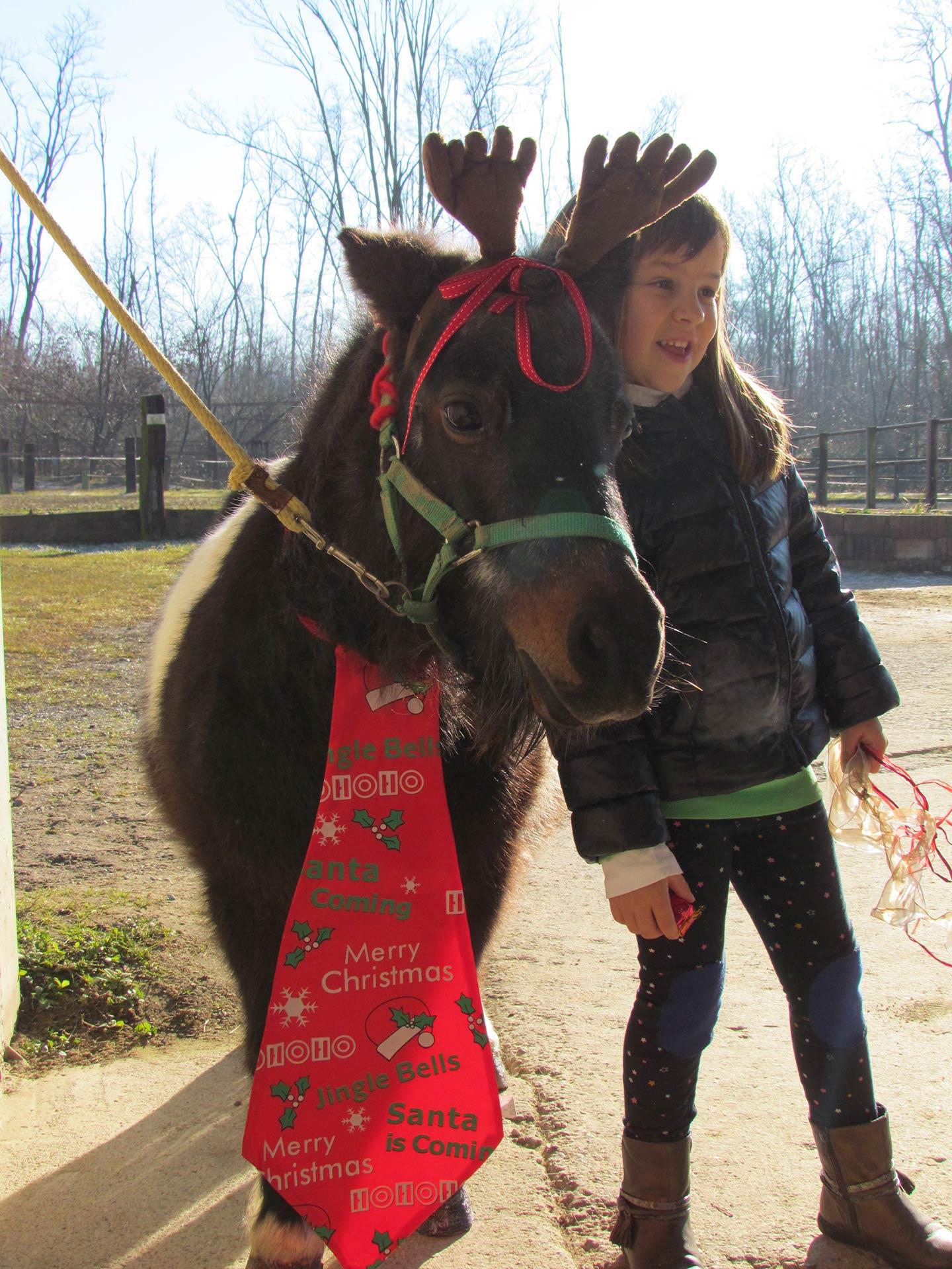 cavallo cammuffato da Renna vicino a una bambina