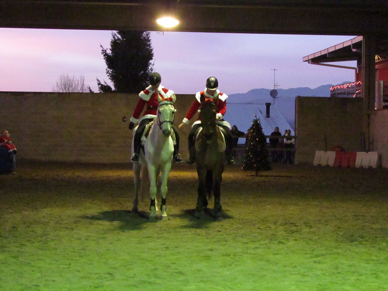 esibizione scuola di equitazione