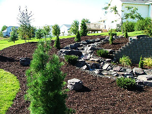 Tree Service for Fairfield, CT