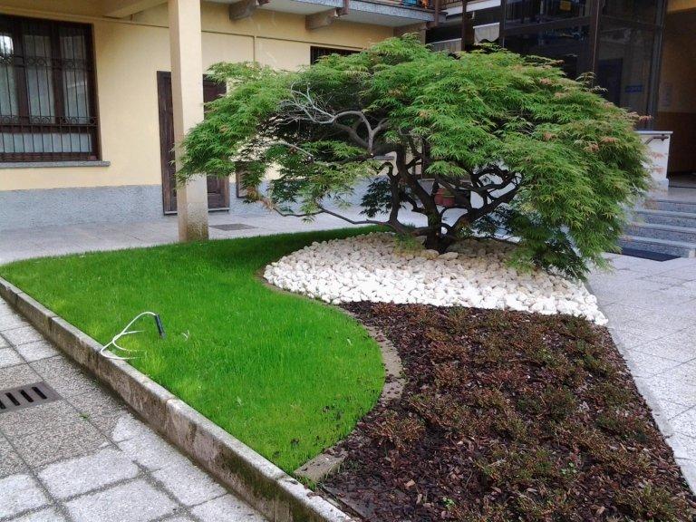 Creazione e aree verdi