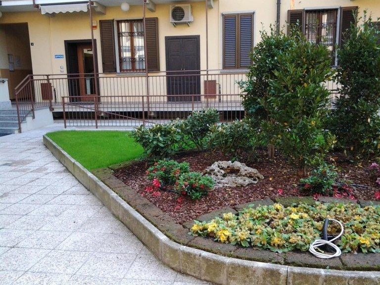 Creazione e manutenzione aree verdi