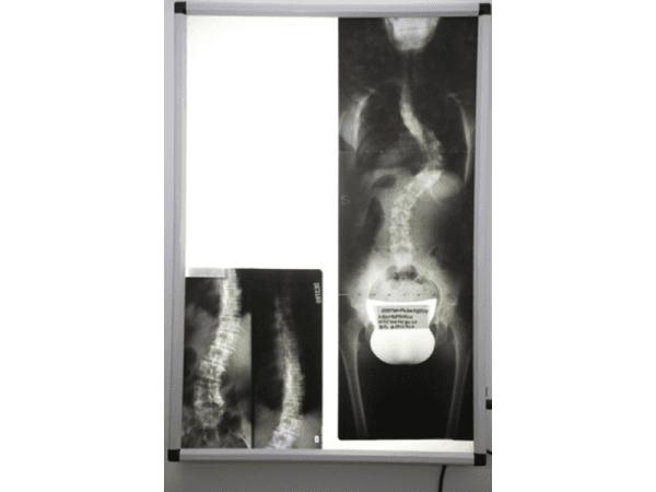 orthopodosystem milano