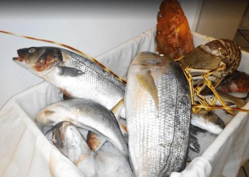 orata, pesce crudo, pesce fresco, ristorante brindisi, astice