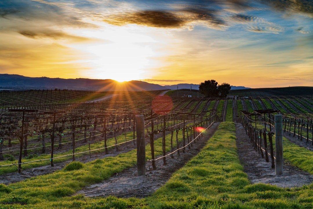 wineries near branson mo