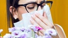 cura allergia alle graminacee, trattamento allergia alle graminacee