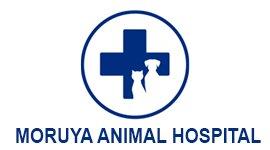 moruya animal hospital