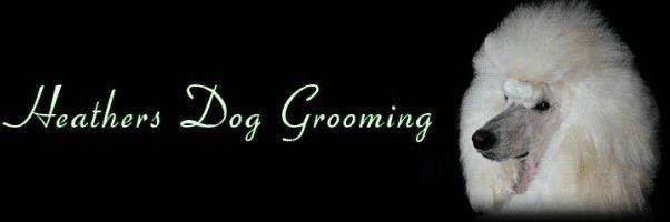 Heathers Dog Grooming Ltd logo