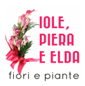IOLE, PIERA E ELDA - Logo