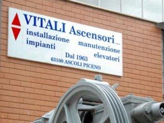 manutenzione ascensori vitali