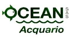 Ocean Acquario Spresiano