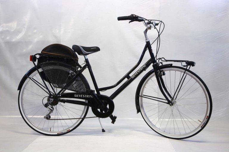 Bicicletta olandesina con 6 rapporti