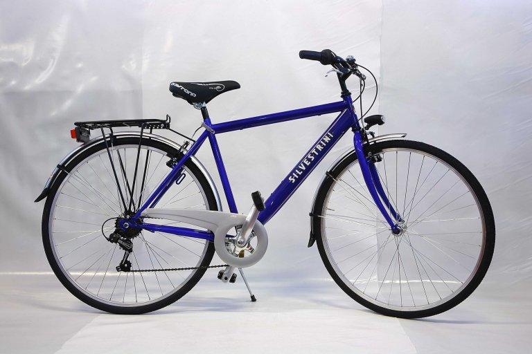 bicicletta uomo con rapporti