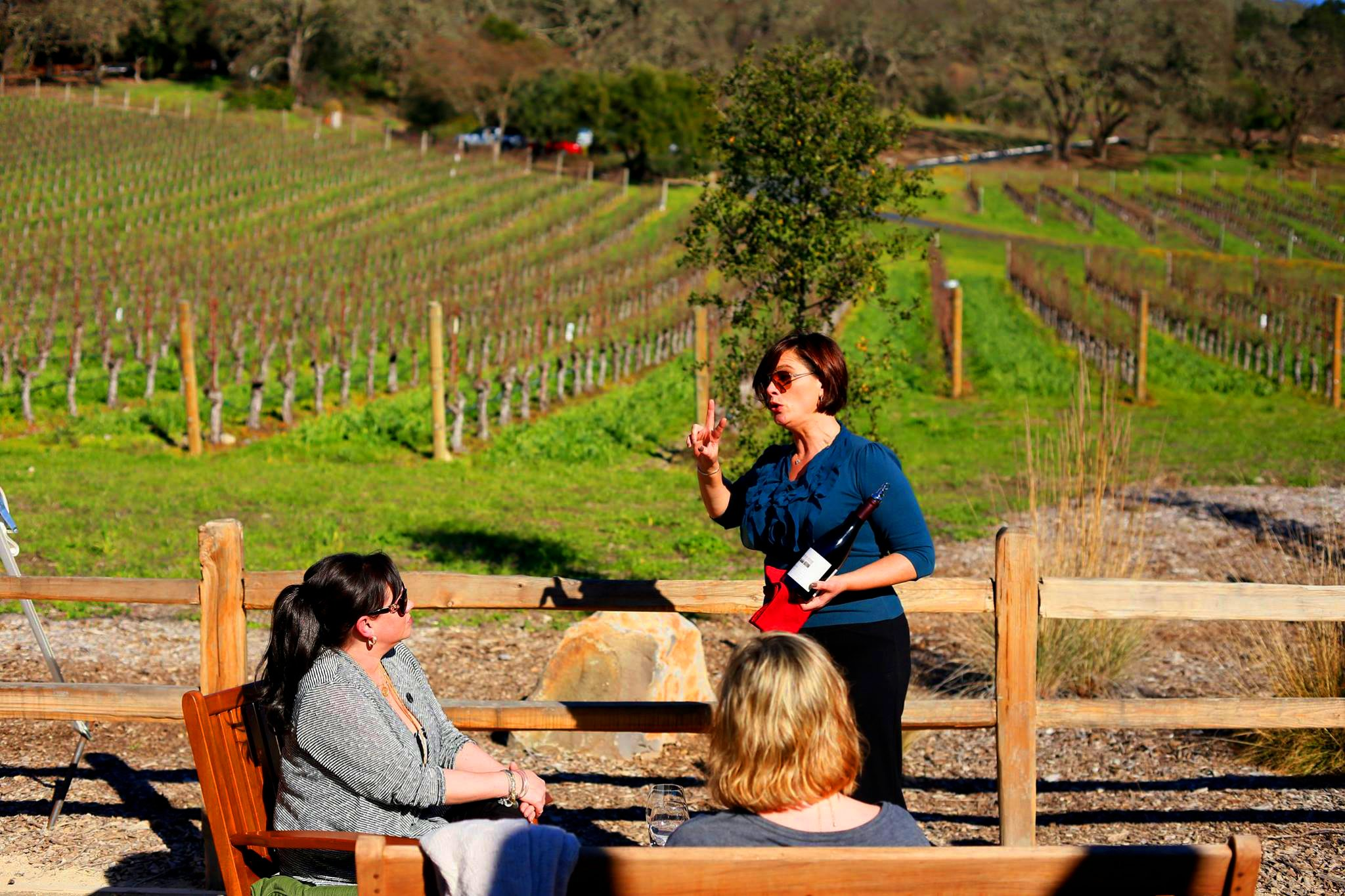 Best private wine tours from San Francisco
