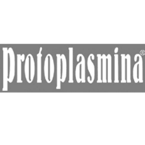 protoplasmina