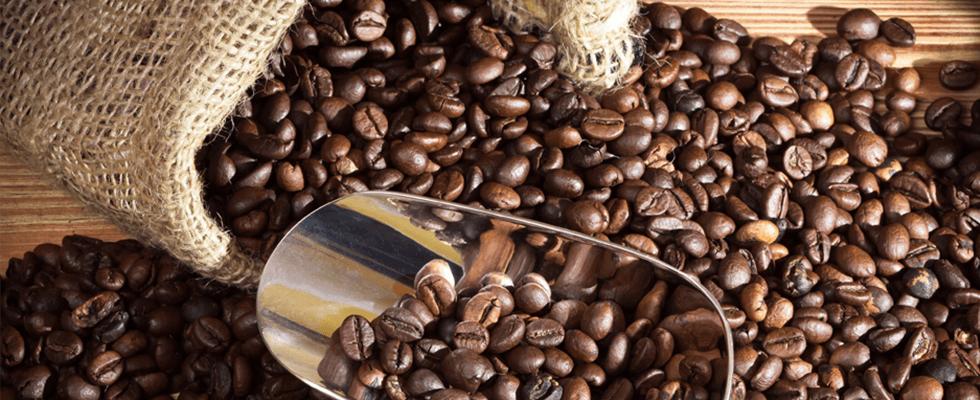 vendita caffè in cialde e capsule