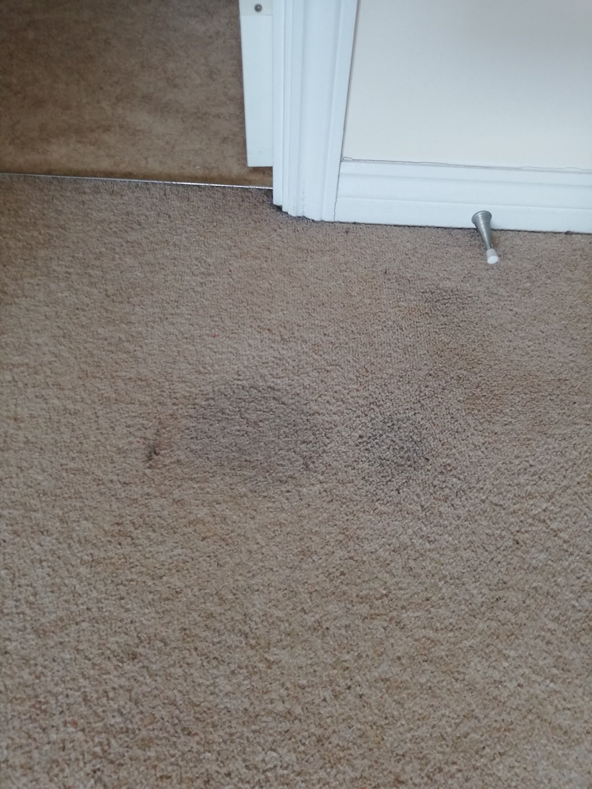 Before. Write your caption here. Button. Carpet cleaning Ely, Cambridgeshire